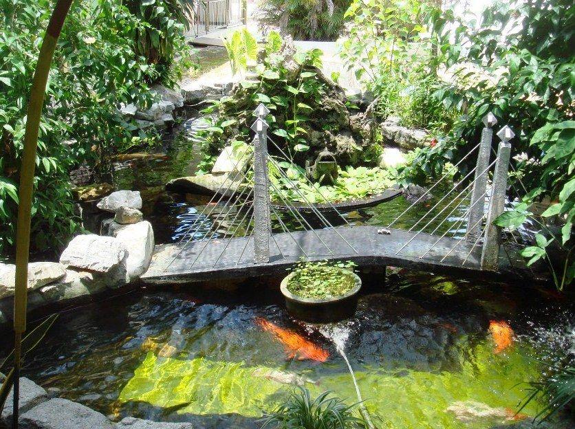 Desain Taman Minimalis Kombinasi Kolam Ikan Sederhana