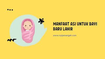 tabel kebutuhan asi bayi tabel kebutuhan asi bayi idai kebutuhan asi bayi baru lahir idai tabel kebutuhan asi bayi sekali minum kebutuhan asi bayi 11 bulan