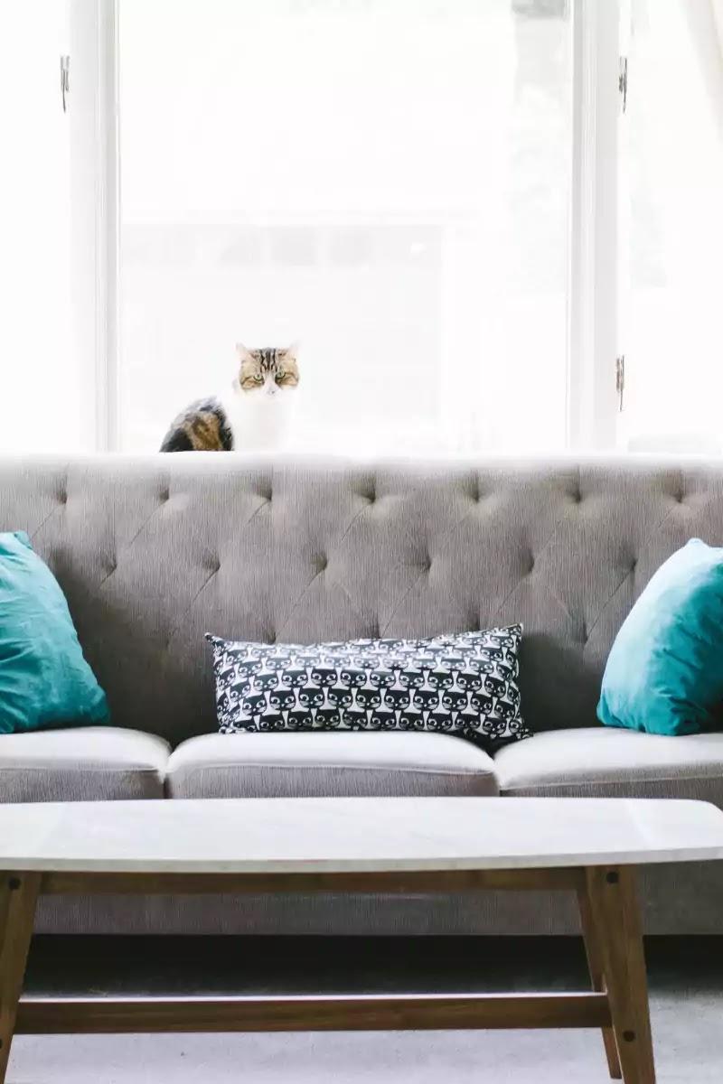 Furniture ko kaise saaf karen