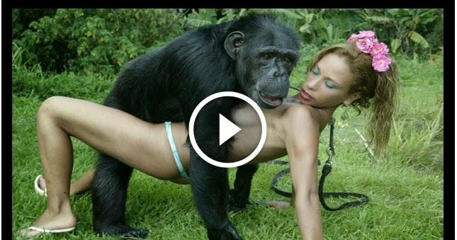 girl-vs-gorilla-nu-fclc-porn-pictures