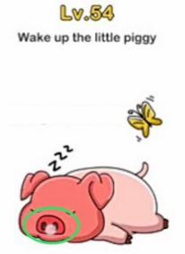 Jawaban Coba Bangunkan Si Piggy Brain Out