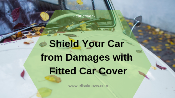 car prevention from damages