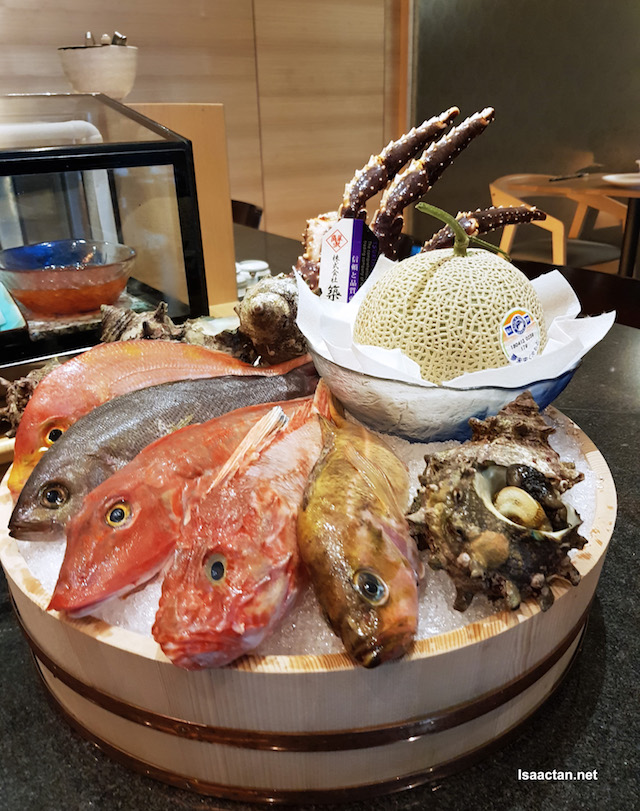 Leather Jacket, Scorpion Fish, Gurnard, Ren-Kodai, Isaki, Yanaginoma and more!