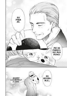 Review del manga El hombre y el gato Vol.1 de Umi Sakurai - Norma Editorial