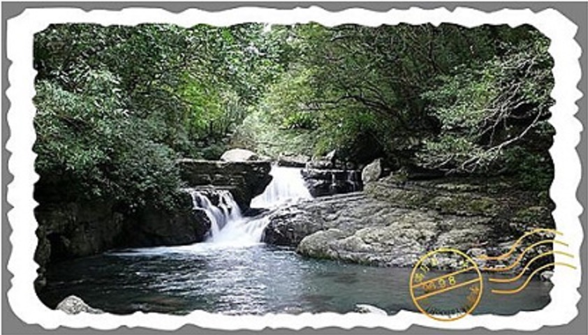 三峽旅遊景點|滿月圓森林遊樂區
