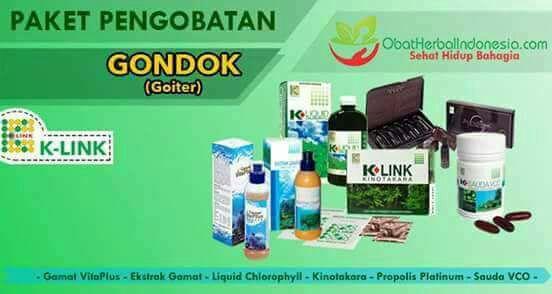 PAKET PENGOBATAN GONDOK K-LINK