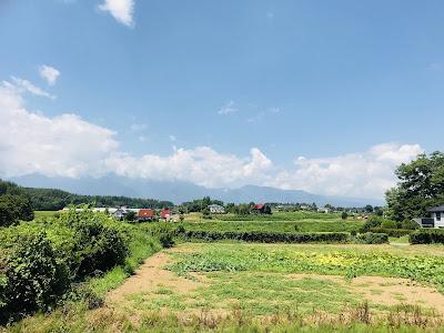 ホップ収穫体験してみた ~再訪・うちゅうブルーイング 高根クラインガルテン