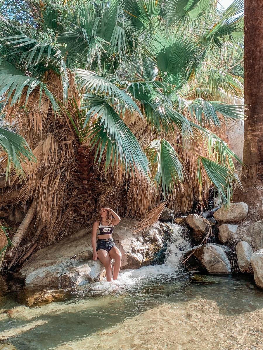 oasis in plam springs