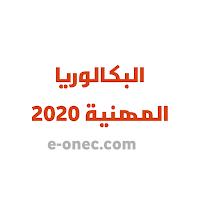 التسجيل في البكالوريا المهنية بداية من سيتمبر 2020