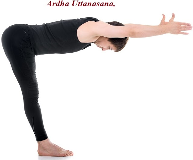 அர்த்த உத்தானாசனம் - Ardha Uttanasana - yoga.