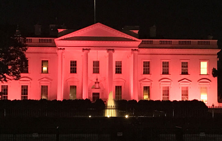 pink Photos: White House Turns PINK For Breast Cancer News