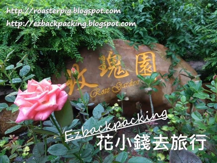 城門谷公園玫瑰園