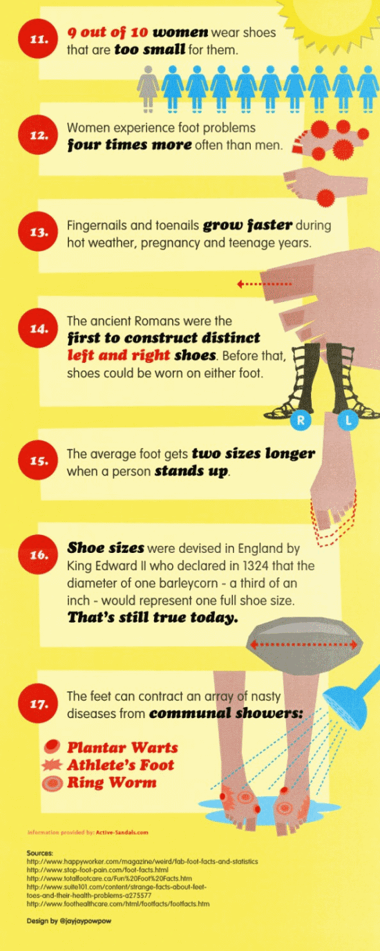 Info - Fakta Menarik Mengenai Kaki Kita