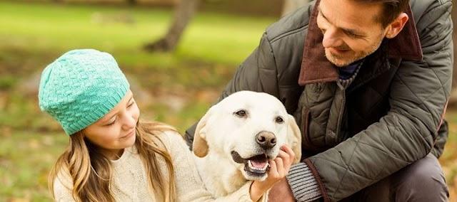 Πέντε τρόποι να πείτε στον σκύλο σας «Σ 'αγαπώ» στη γλώσσα του