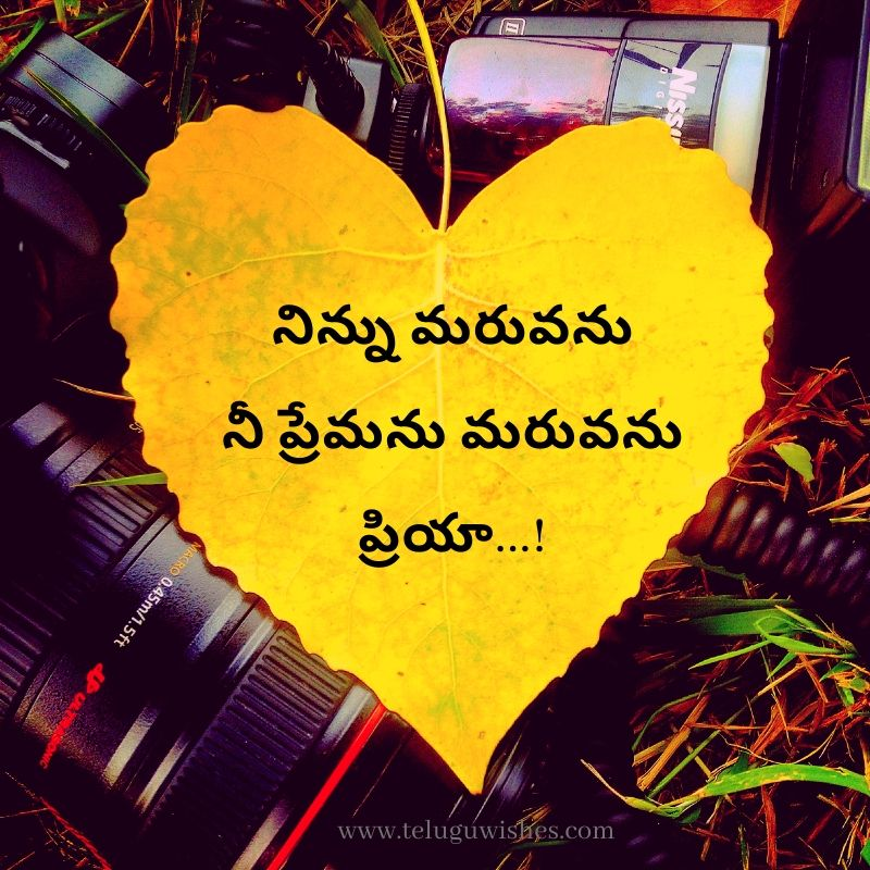 Valentines day wishes images in Telugu