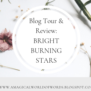 Blog Tour and Review: BRIGHT BURNING STARS - by A.K. Small