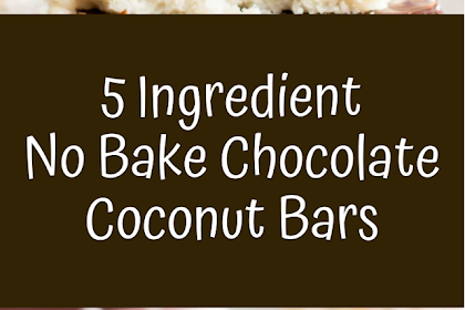 5 Ingredient No Bake Chocolate Coconut Bars (Paleo, Vegan, Gluten Free, Dairy-Free, Refined Sugar-Free)