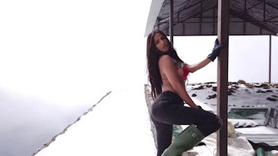 "Free download Poonam Pandey's ""FIRE AND ICE"" full video in full HD"