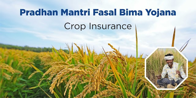 Pradhan Mantri Fasal Bima Yojana Online Registration 2020 Rabi Season ll प्रधान मंत्री फसल बीमा योजना ऑनलाइन रजिस्ट्रेशन २०२०