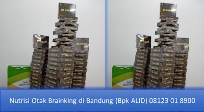PROMOSI, 08123 01 8900 (Bpk. Alid), Nutrisi Otak Brainking di Bandung