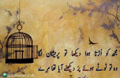 Mujh Lo Urta Howa Dekha Tu Pershan Laga.  Woh To Totay Howay Per Dekhnay Aya Tha Mery..!!  #line #poetry