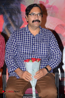 Evaro Thanevaro Telugu Movie Audio Launch Stills  0004.jpg
