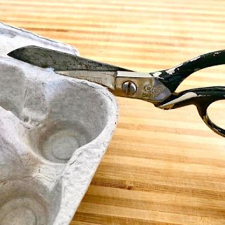 scissors cutting egg carton