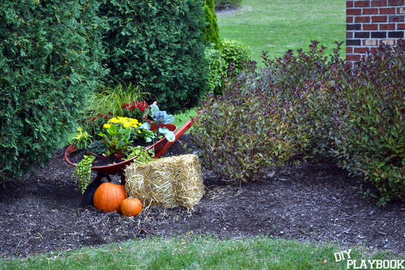fall wheelbarrow planter in front yard
