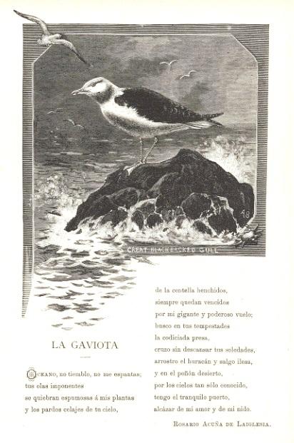 """Álbum poético. Colección de composiciones inéditas... p. 131"""""""