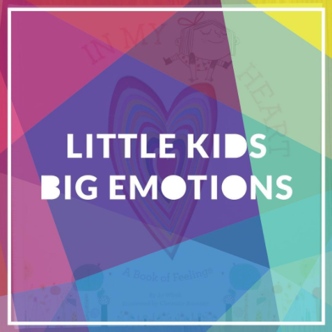 A great list of picture books from the @KidLitPicks team on the theme of Little Kids Big Emotions.