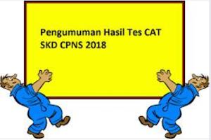 Terbaru dan Update Pengumuman Hasil SKD, Nama yang Maju Ke SKB CPNS 2018