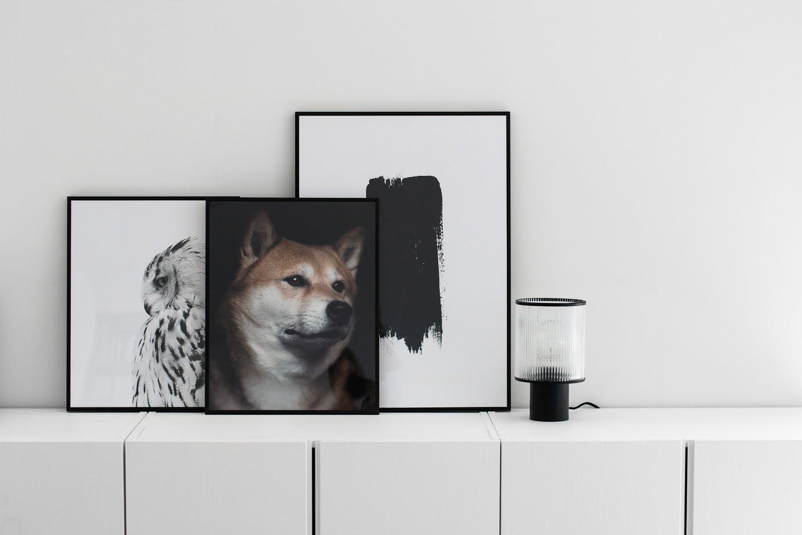 poster store, posters, snow owl, minimalist, minimal interior, interieur, foto's, muurdecoratie, black white, zwart wit