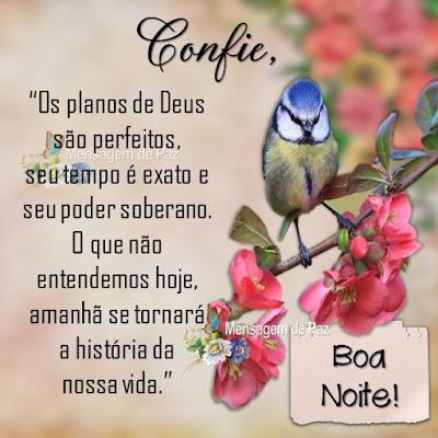 """""""Os planos de Deus são perfeitos,  seu tempo é exato e seu poder soberano.  O que não entendemos hoje, amanhã  se tornará a história da nossa vida."""" Boa Noite!"""