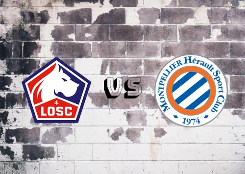 Lille vs Montpellier  Resumen