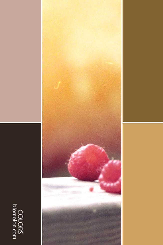 variedad_en_color_combinacion_7