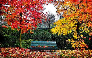Набросок Осенний пейзаж