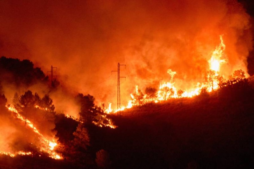 """Out of control forest fire in Spain destroys 1,100 hectares The Forestry Commission of Catalonia, Spain, announced today, Sunday, through the social networking site """"Twitter"""" that a forest fire about 100 kilometers west of Barcelona destroyed 1,100 hectares of forests and agricultural land."""