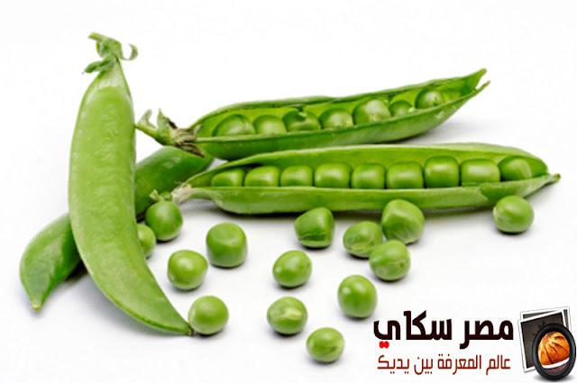 كيفية الحفظ والتجفيف للخضروات بطريقة سليمة Conservation and drying