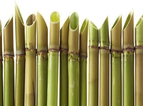 Bambu Runcing