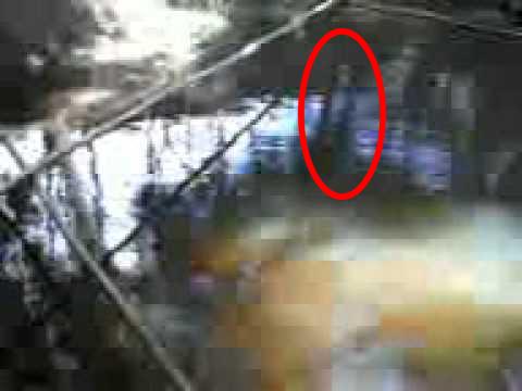 Fantasma assombra rio na Vila Zumbi em Colombo