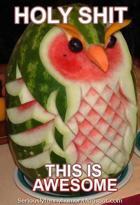 holy-shit-awesome-watermelon-shape-of-owl