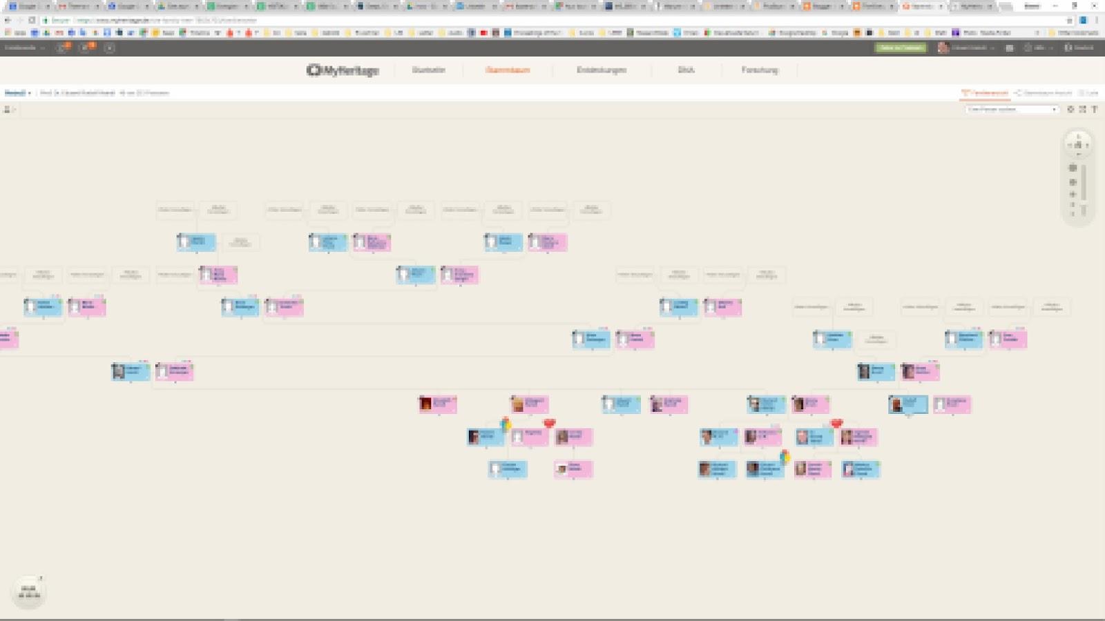 Großartig Stammbaum Färbung Seite Zeitgenössisch - Beispiel Business ...