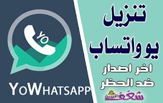 تنزيل يو واتساب اخر اصدار واتساب يوسف الباشا 2020 download yowhatsapp
