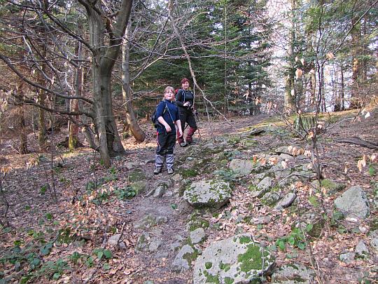 Właśnie pokonaliśmy najwyższa kulminację szlaku na stokach Kamienia nad Kątami.