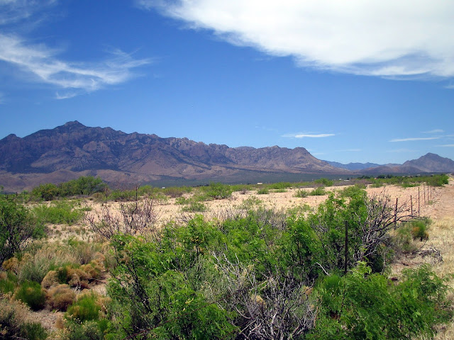 Photo of a sky island in the American Southwest