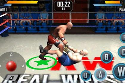 Real Wrestling 3D v1.3 Apk