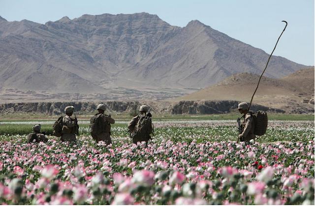 Provincia de Helmand: ¿Laboratorio de drogas a escala global?