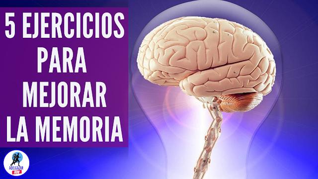 5 Hábitos y Ejercicios para Mejorar La Memoria y la Concentración