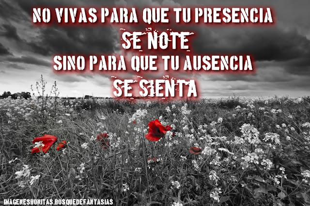 REFLEXIONES :  no vivas para que tu presencia se note sino para que tu ausencia se sienta