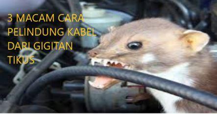 3 Macam Pelindung Kabel Motor dari Gigitan Tikus
